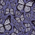 BUTTERFLY_TEX_-_Copia